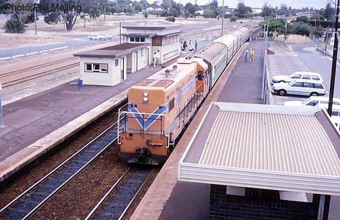 a1502cottesloe30nov86.jpg